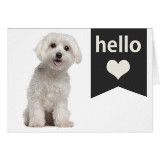 こんにちは白いマルタの小犬のブランクのメッセージカード カード