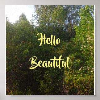 こんにちは美しい ポスター