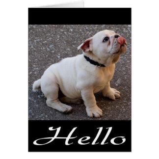 こんにちは英国のブルドッグの小犬のブランクのメッセージカード カード