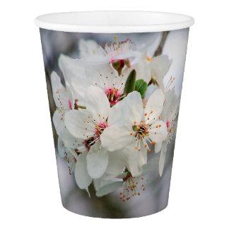 さくらんぼの桜の花 紙コップ