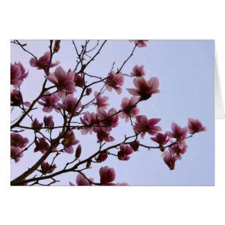 さくらんぼの開花の挨拶状 カード