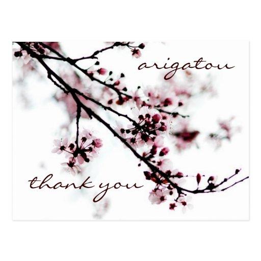 さくらんぼ 花 感謝していして下さい  はがき