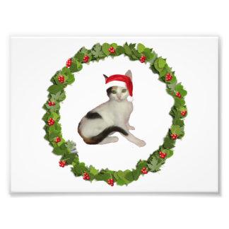 さらさの子ネコのクリスマスのリース フォトプリント