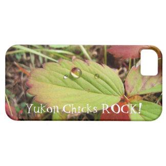 しぶきの型枠の完全さ; ユーコン準州のひよこの石! iPhone SE/5/5s ケース