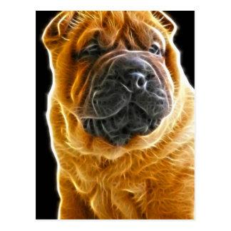 しわ、中国のなShar Peiの小犬 ポストカード
