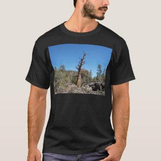すごい木 Tシャツ