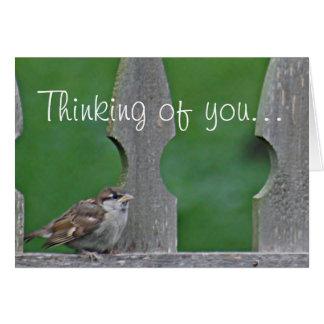すずめのひな鳥 カード