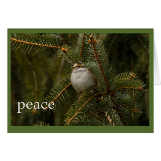 すずめの平和休日カード カード