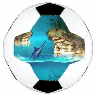 すばらしい幻想の世界 サッカーボール