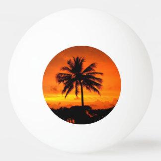 すばらしい日没 卓球ボール