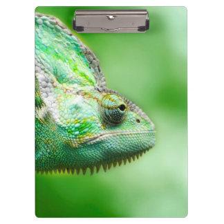 すばらしい緑のハ虫類のカメレオン クリップボード