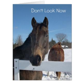 すべてからのおもしろいな馬の第50誕生日 ビッググリーティーングカード