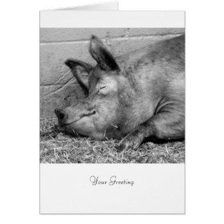すべての行事のための睡眠のブタ カード