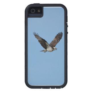 すべるミサゴ iPhone SE/5/5s ケース