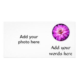 すみれ色か紫色のダリア カード