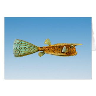 ずっと角状のCowfish カード