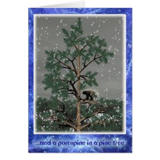そして松の木のヤマアラシ カード