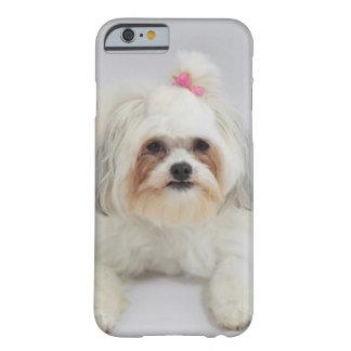 それのピンクの弓が付いているbichonのfriseは毛です barely there iPhone 6 ケース