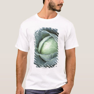それの水の低下のキャベツの頭部、 Tシャツ