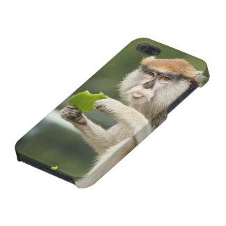 """""""それは月曜日""""猿のiPhoneの場合です iPhone 5 ケース"""