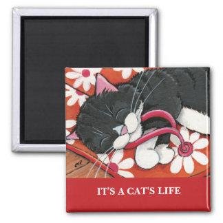 それは猫の生命| Personalizable猫の芸術の磁石です マグネット