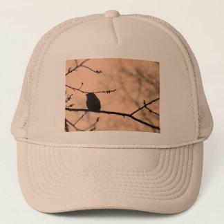 たそがれのシルエットの枝の《鳥》アメリカゴガラ キャップ