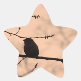 たそがれのシルエットの枝の《鳥》アメリカゴガラ 星シール