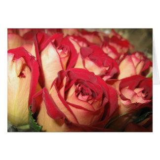 たそがれのバラの挨拶状 カード