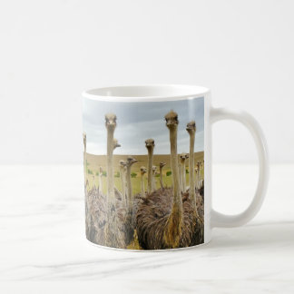 だちょうの鳥 コーヒーマグカップ