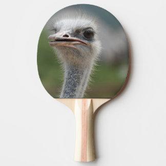 だちょうの鳥 卓球ラケット