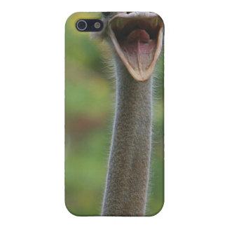 だちょうのiPhoneの場合4 iPhone SE/5/5sケース