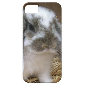 だらしない耳のウサギ iPhone SE/5/5s ケース