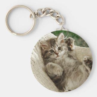 だれ私か。 ハンモックの子ネコ キーホルダー
