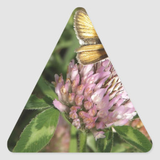 ちっぽけな花のちっぽけなガ 三角形シール