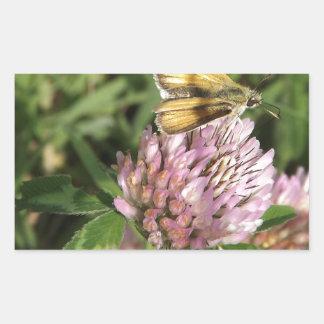 ちっぽけな花のちっぽけなガ 長方形シール