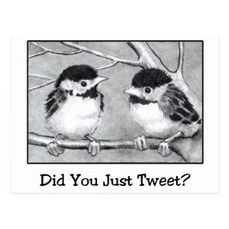 ちょうどさえずりましたか。 鉛筆の芸術: 小鳥 ポストカード
