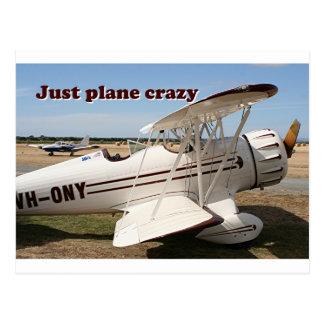 ちょうど平らな熱狂する: Wacoの複葉機の航空機 ポストカード