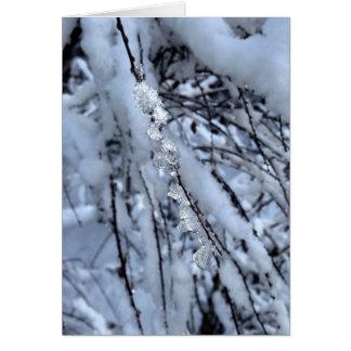 つららの休日カード-理由の季節 カード