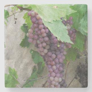 つる植物のコースターの紫色のブドウ ストーンコースター