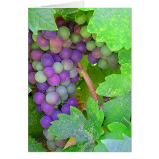 つる植物のブドウ カード
