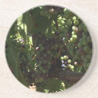 つる植物の砂岩コースターのブドウ コースター
