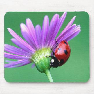 てんとう虫および紫色の花 マウスパッド