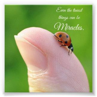 てんとう虫の小さい奇跡の引用文の正方形の写真のプリント フォトプリント