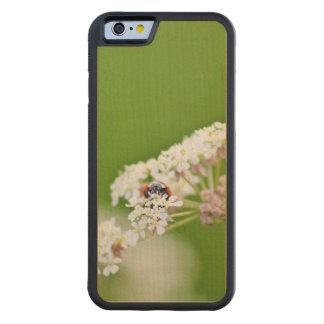 てんとう虫の隠れること CarvedメープルiPhone 6バンパーケース