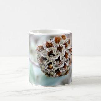 てんとう虫またはてんとう虫のマグが付いている花の種の頭部 コーヒーマグカップ