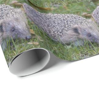 とげのヨーロッパのハリネズミの包装紙 ラッピングペーパー