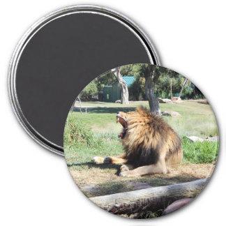 とどろき! とどろいているライオン! マグネット