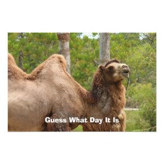 どんな日をそれがラクダのおもしろいな引用文であるか推測 フォトプリント