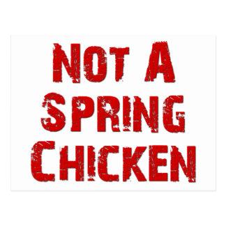 ない春鶏 ポストカード