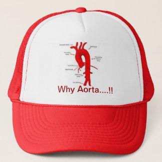 なぜ。大動脈….!!    帽子